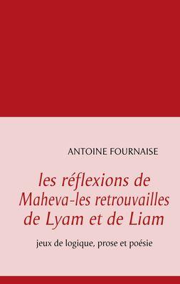 les réflexions de Maheva-les retrouvailles de Lyam et de Liam