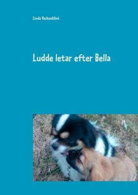 Ludde letar efter Bella