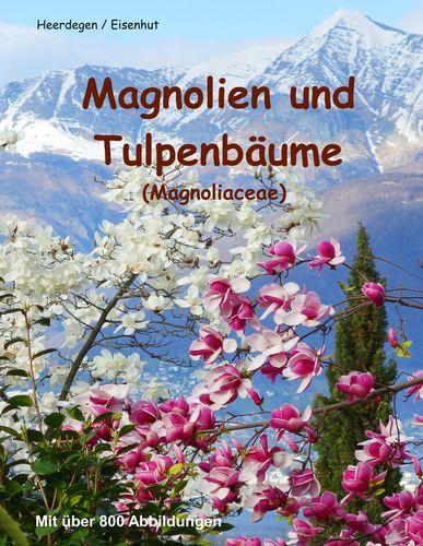 Magnolien und Tulpenbäume
