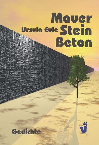 Mauer Stein Beton