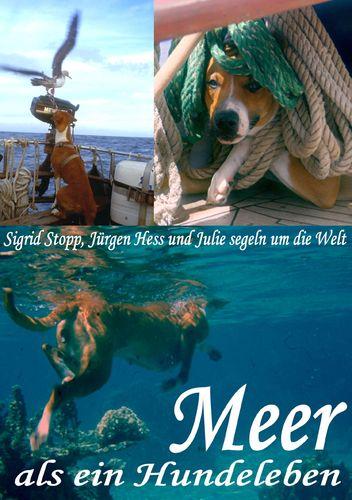 Meer als ein Hundeleben