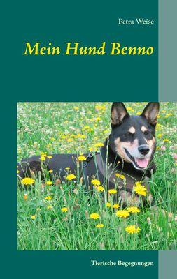 Mein Hund Benno