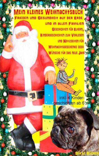 Mein kleines Weihnachtsbuch - Frieden und Gesundheit auf der Erde und in allen Familien