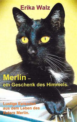 Merlin - ein Geschenk des Himmels.