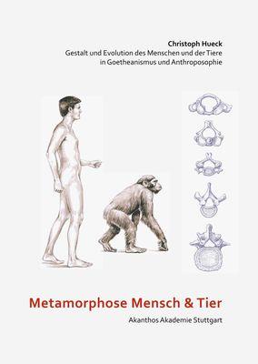 Metamorphose Mensch und Tier