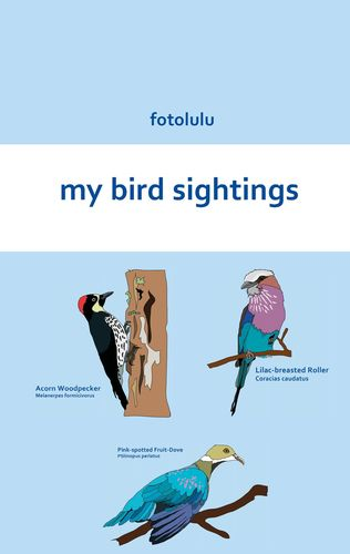 my bird sightings