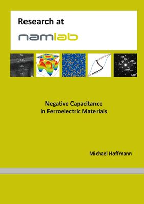 Negative Capacitance in Ferroelectric Materials