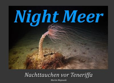 Night Meer