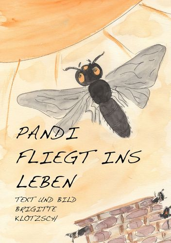 Pandi fliegt ins Leben