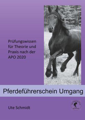 Pferdeführerschein Umgang