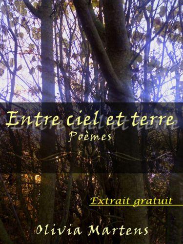 Poème - Extrait gratuit