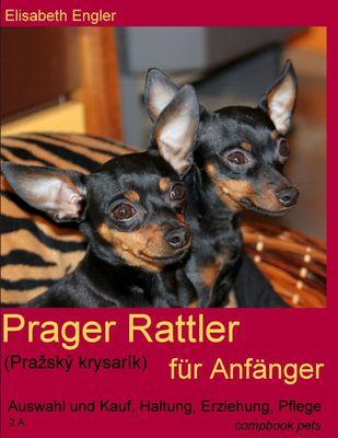 Prager Rattler (Pražský krysarík) für Anfänger