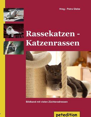 Rassekatzen - Katzenrassen