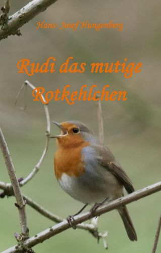 Rudi das mutige Rotkehlchen