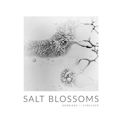 Salt Blossoms