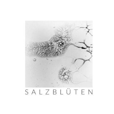 Salzblüten