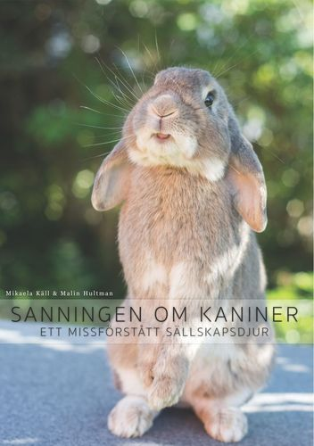 Sanningen om kaniner