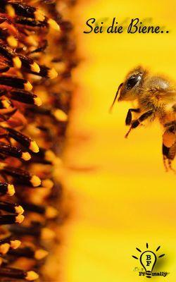 Sei die Biene..