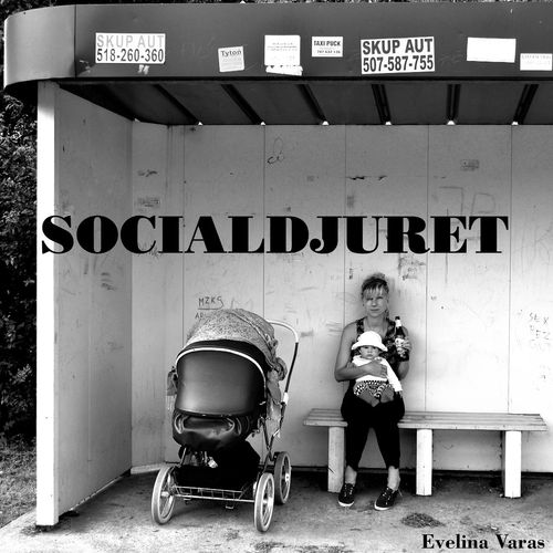 Socialdjuret