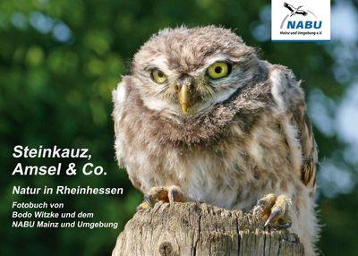 Steinkauz, Amsel & Co.