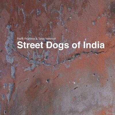Street Dogs of India