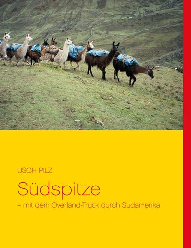 Südspitze