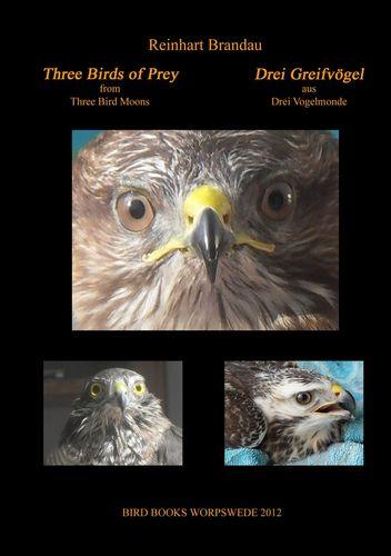 Three Birds of Prey - Drei Greifvögel