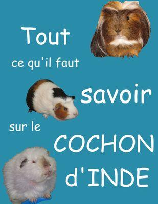 Tout ce qu'il faut savoir sur le cochon d'inde (nouvelle édition)