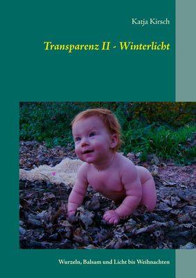 Transparenz II - Winterlicht