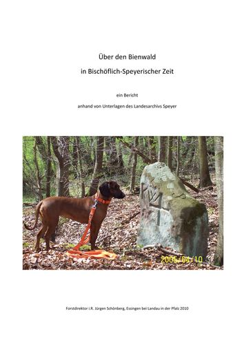 Über den Bienwald in Bischöflich-Speyerischer Zeit