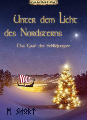 Unter dem Licht des Nordsterns