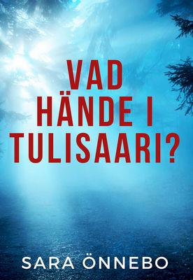Vad hände i Tulisaari?