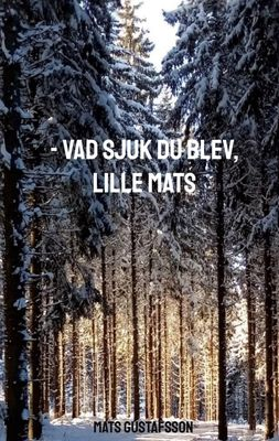 -VAD SJUK DU BLEV, LILLE MATS
