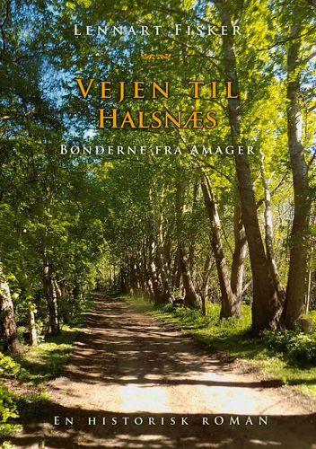 Vejen til Halsnæs