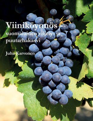 Viiniköynnös - suomalainen viljely- ja puutarhakasvi