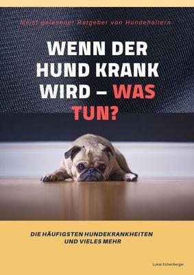 Wenn der Hund krank wird - was tun?