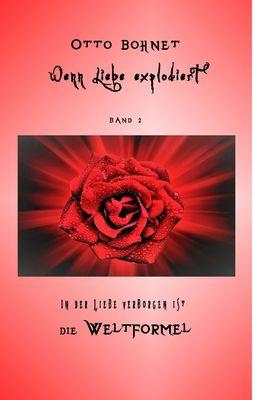 Wenn Liebe explodiert - Band 2