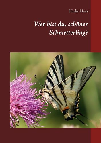 Wer bist du, schöner Schmetterling?