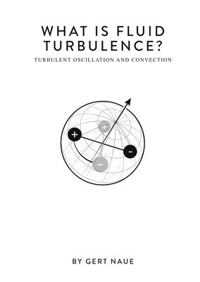 What Is Fluid Turbulence?