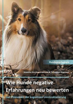 Wie Hunde negative Erfahrungen neu bewerten