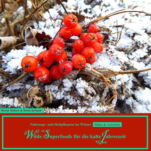Wilde Superfoods für die kalte Jahreszeit