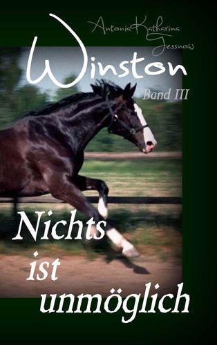Winston - Nichts ist unmöglich