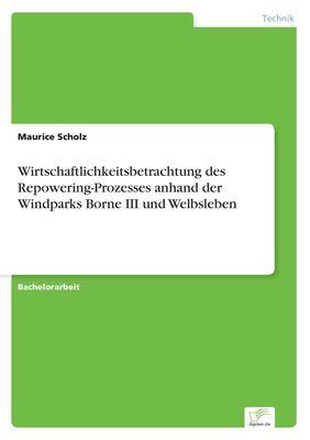 Wirtschaftlichkeitsbetrachtung des Repowering-Prozesses anhand der Windparks Borne III und Welbsleben