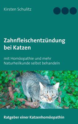 Zahnfleischentzündung bei Katzen